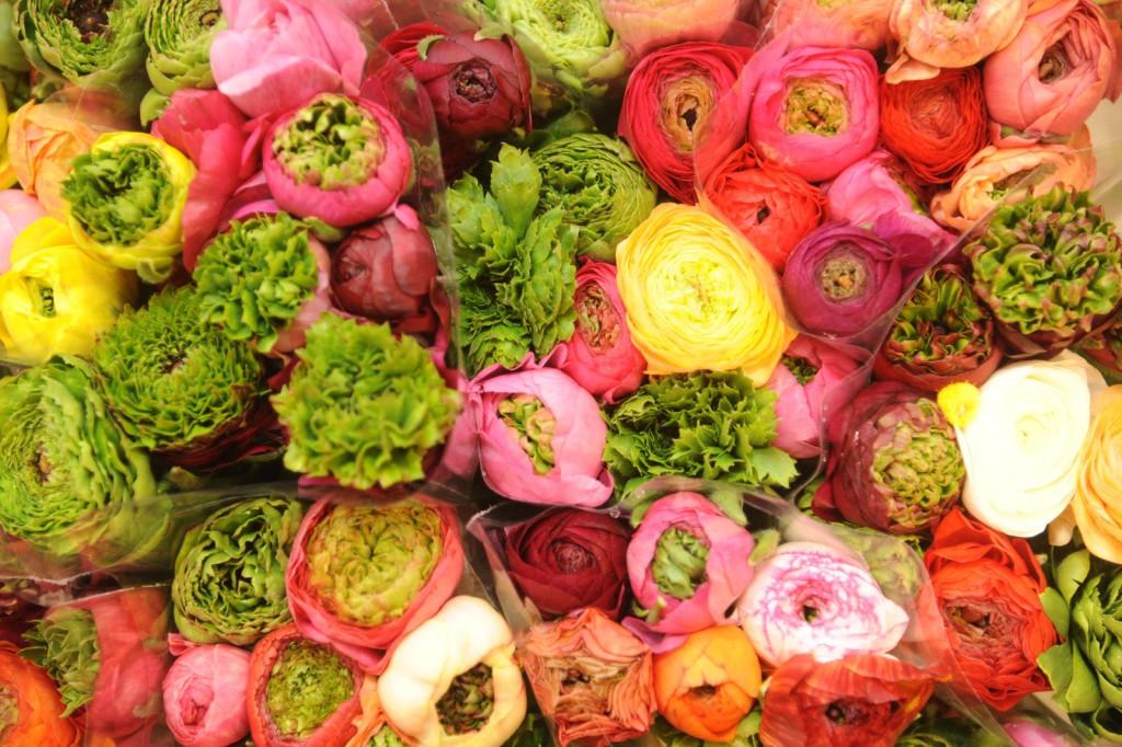 fleurs_coupees