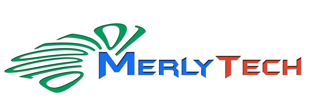 Logo Merlytech